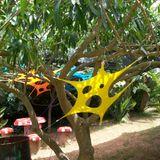 Ozmali - Under the Wacky Woods - 2012 - dj set