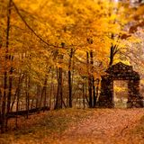 Peer V - Autumn is here