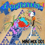 Tropicalism Mini-Mix 001
