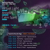 Digital Sunrise - Live @ TRIPlament pres. Virtual light & Anoebis & Calm Spirit