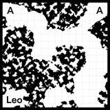 Leo - Eclairage - La Quotidienne