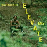 "Buzz (Boss Hi-Fi) ""Elevate"" Mix"