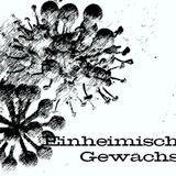 Niki Matita ::: Einheimische Gewächse ::: SommerMix 2012 ::: RADIO
