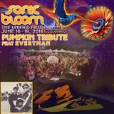 Sonic Bloom 2016: Pumpkin Tribute Feat. EVeryman 6/17/2016