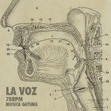 1685 LA VOZ. // musica gatuna