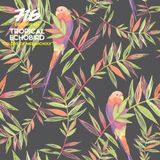 716 Exclusive Mix - Tropical Echobird : Color Of Melancholy