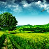 Boyan - Welcome to Dobracha