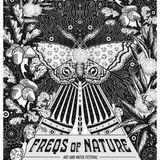 08/07/18 Dj Chuckles@Freqs of Nature, Groove floor