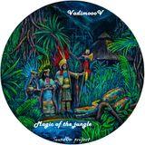 VadimoooV - Magic of the jungle_SoundOm project