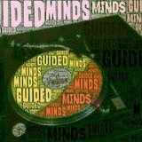 SteveB's Guided Minds Show 1st Feb 2015