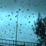 "Patrick Akutakustik ""November Rain"""