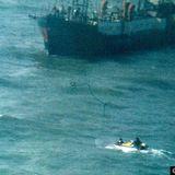 Stukje uit onze zeezendergeschiedenis 31/08/1994.
