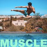 MUSCLE Playlist Summer 2017