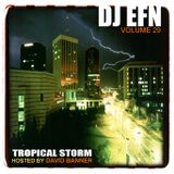 DJ EFN - Vol 29 (Tropical Storm)
