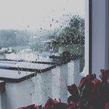 [BMTY] NHỮNG CƠN MƯA BẤT CHỢT