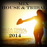 MIX HOUSE AND TRIBAL HOUSE 1