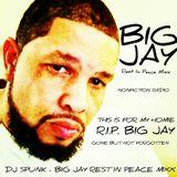 DJ SPUNK - BIG JAY REST IN PEACE MIXX