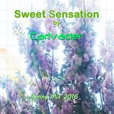 Sweet Sensation 2K16 Spring Mix