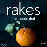 Rakes - Live + Recorded 002