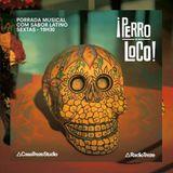 PERRO LOCO #33