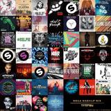 Party Mix Vol.11 <Mega Mashup Mix>