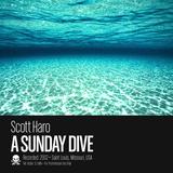 A Sunday Dive