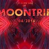 Vice - Dark Moontrip- 01042016
