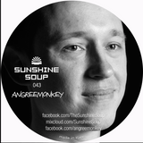 Sunshine Soup 043 - Angreemonkey (back to house)