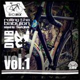 Rolling Tha Babylon Vol. 1 / Mixed By Thark Welk