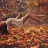 DJ_Joke_The_wind_of_autumn