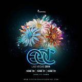 Brennan Heart @ Electric Daisy Carnival 2014 Las Vegas