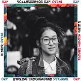 Collaborator 027: Openi