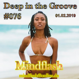 Deep in the Groove 076 (01.02.19)