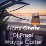 Bronx Cheer, Dj Proof & Wayne Carter Live @ Fistral Beach