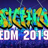 EDM Mix 2019 V.4