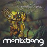 Monte Bong - En Sintonia con la Tierra