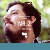 Home Scene: Mr. Z