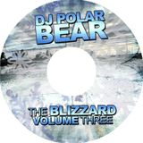 DJ Polar Bear(Dorin Miricinschi)-January 2012 Mix