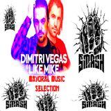 Dimitri Vegas & Like Mike Mix 2018|Best of Dimitri Vegas & Like Mike - Mayoral Music Selection