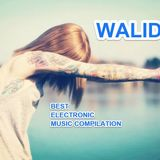 Walid Mx - In The Mix #003