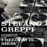 49. Stefano Greppi - Freedom Is... Show