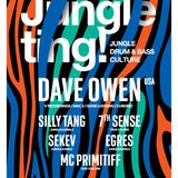 SILLY TANG @ JUNGLE TING! PRESENTS: DAVE OWEN AUGUST 2016 PROMO MIX