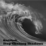 Karl Fink - Stop Chasing Shadows