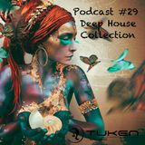 Podcast #29 / Deep House Collection