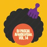 Dj Pascal - AfroDeepSoul Vol.14