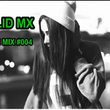 Walid Mx - In The Mix #004