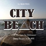 WAM pres.The Unknown - City Beach Glauchau Juli 2013