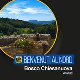 Benvenuti al Nord - Bosco Chiesanuova (VR)