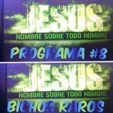 BICHOS RAROS PROGRAMA #8