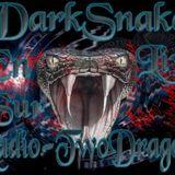 Darkmix Special Live Années 1989-2000 Radio TwoDragons 18.1.2018